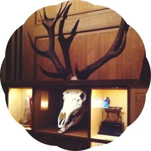 lesmuseedeparis- chasse et nature- 2