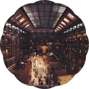 Musee de l'histoire naturelle- Les Musées de Paris- Grande Galerie