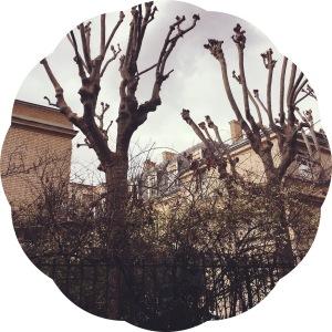 Les Musées de Paris- Musée Curie- rue, street